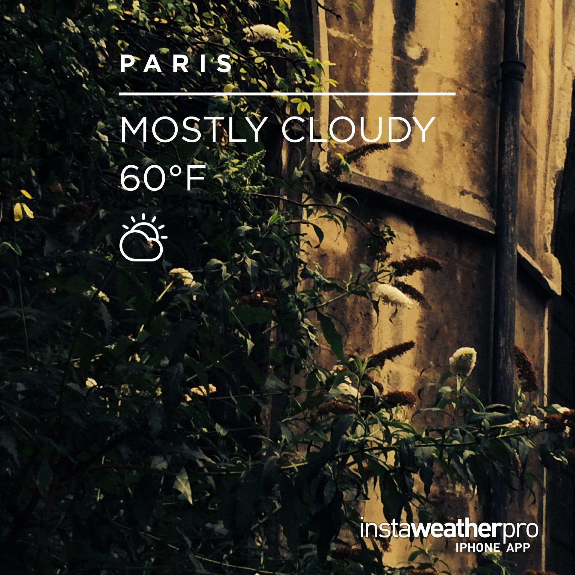 Well instaweather chéri...it was actually raining...but you got the temperature right!